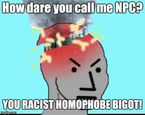 ERROR CODE: NPC | How dare you call me NPC? YOU RACIST HOMOPHOBE BIGOT! | image tagged in npc meltdown,error 404,npc,triggered liberal,super_triggered,computer suicide | made w/ Imgflip meme maker