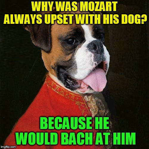 Muttzart Jokes | WHY WAS MOZART ALWAYS UPSET WITH HIS DOG? BECAUSE HE WOULD BACH AT HIM | image tagged in memes,mozart,bach,dogs,jokes,classical music | made w/ Imgflip meme maker