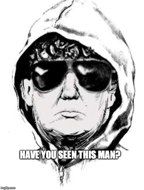 Trumpbomber | HAVE YOU SEEN THIS MAN? | image tagged in unabomber,trump,bobcrespodotcom | made w/ Imgflip meme maker