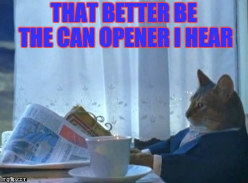 I Should Buy A Boat Cat Meme | THAT BETTER BE THE CAN OPENER I HEAR | image tagged in memes,i should buy a boat cat | made w/ Imgflip meme maker