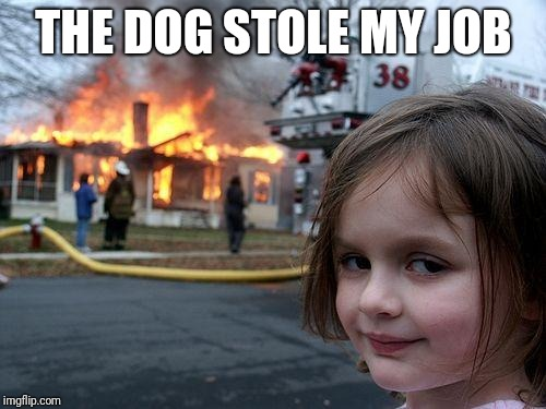 Disaster Girl Meme | THE DOG STOLE MY JOB | image tagged in memes,disaster girl | made w/ Imgflip meme maker