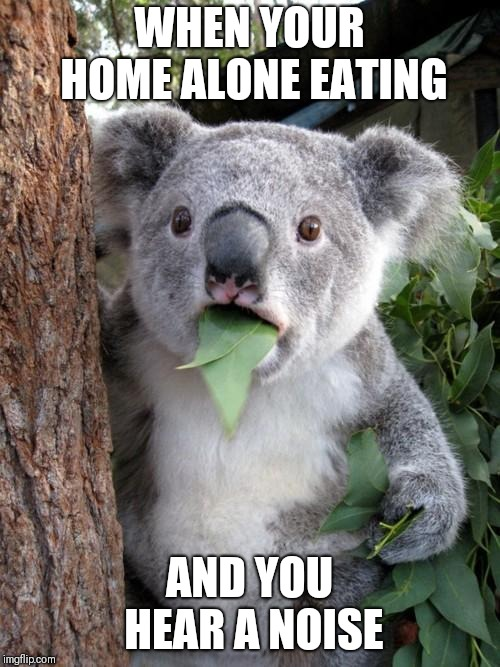 Surprised Koala Meme | WHEN YOUR HOME ALONE EATING AND YOU HEAR A NOISE | image tagged in memes,surprised koala | made w/ Imgflip meme maker
