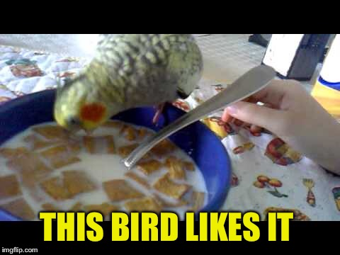 THIS BIRD LIKES IT | made w/ Imgflip meme maker