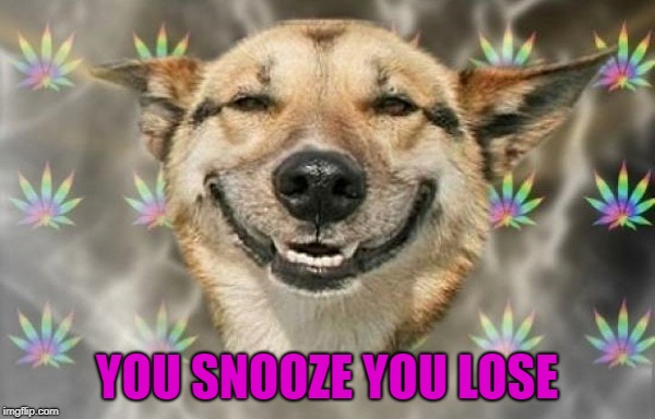 YOU SNOOZE YOU LOSE | made w/ Imgflip meme maker