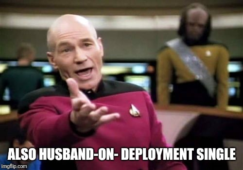 ALSO HUSBAND-ON- DEPLOYMENT SINGLE | image tagged in memes,picard wtf | made w/ Imgflip meme maker