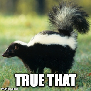 Skunk | TRUE THAT | image tagged in skunk | made w/ Imgflip meme maker