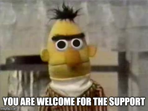 Bert Stare | YOU ARE WELCOME FOR THE SUPPORT | image tagged in bert stare | made w/ Imgflip meme maker