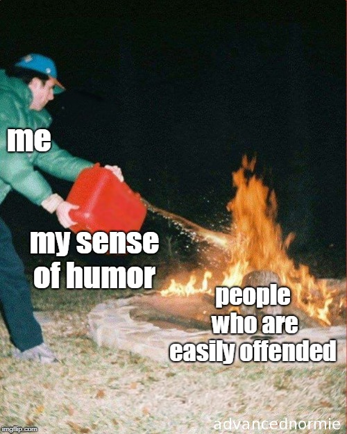 The internet wouldn't be half the fun without all the easily offended people! |  me; my sense of humor; people who are easily offended | image tagged in pouring gas on fire,easily offended,offensive,dark humor,trolling,memes | made w/ Imgflip meme maker