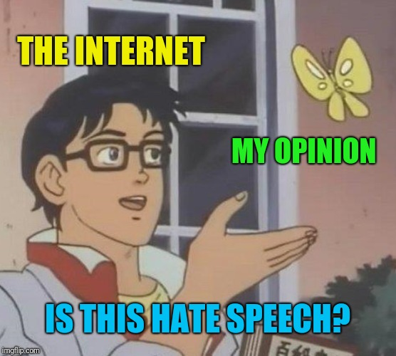 Is This A Pigeon Meme | THE INTERNET MY OPINION IS THIS HATE SPEECH? | image tagged in memes,is this a pigeon | made w/ Imgflip meme maker