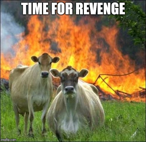 Evil Cows Meme | TIME FOR REVENGE | image tagged in memes,evil cows | made w/ Imgflip meme maker