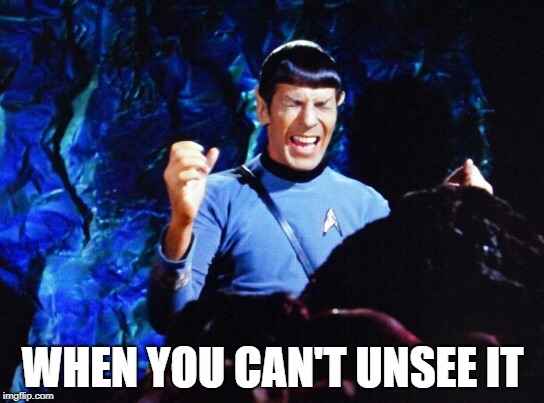 When you can't unsee it |  WHEN YOU CAN'T UNSEE IT | image tagged in spock stress,unsee,screaming,spock,star trek | made w/ Imgflip meme maker