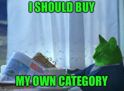 I Should Buy a Boat RayCat | I SHOULD BUY MY OWN CATEGORY | image tagged in i should buy a boat raycat | made w/ Imgflip meme maker