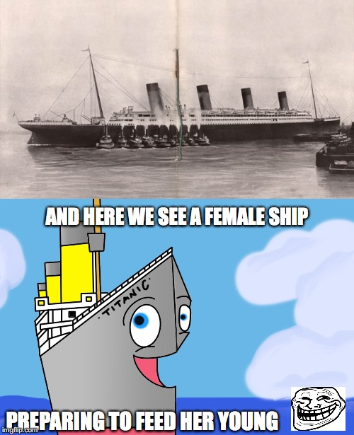 Bad Pun Titanic #27 | AND HERE WE SEE A FEMALE SHIP PREPARING TO FEED HER YOUNG | image tagged in bad pun,titanic,troll face,female,ship | made w/ Imgflip meme maker