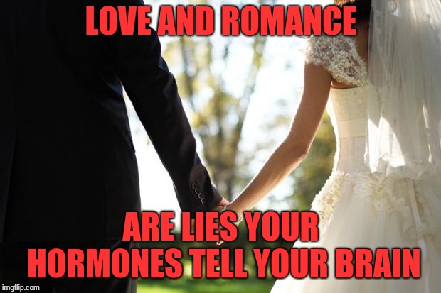 Never Again | LOVE AND ROMANCE ARE LIES YOUR HORMONES TELL YOUR BRAIN | image tagged in wedding,lies | made w/ Imgflip meme maker