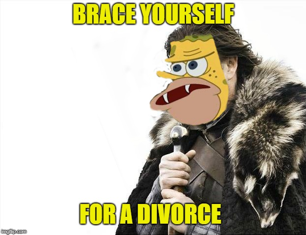 BRACE YOURSELF FOR A DIVORCE | made w/ Imgflip meme maker