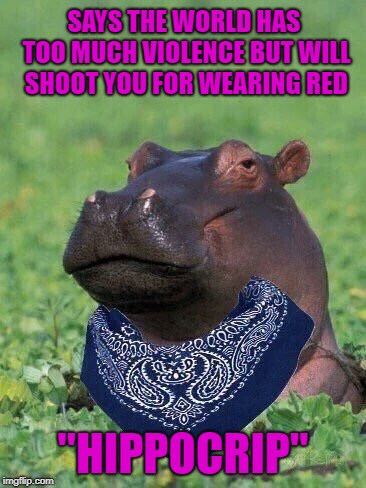 "I hope no Bloodhounds show up!!! | SAYS THE WORLD HAS TOO MUCH VIOLENCE BUT WILL SHOOT YOU FOR WEARING RED ""HIPPOCRIP"" 