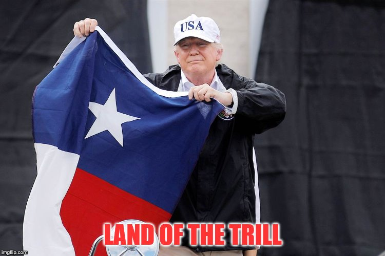 Texas Strong | LAND OF THE TRILL | image tagged in texas,president trump,topkek | made w/ Imgflip meme maker