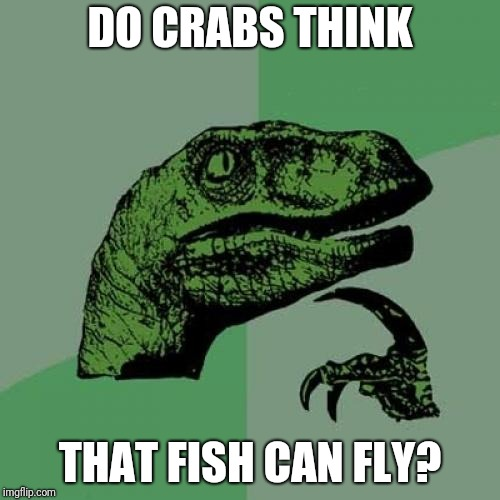 And birds swim I guess? | DO CRABS THINK THAT FISH CAN FLY? | image tagged in memes,philosoraptor,crabs,fish,ilikepie314159265358979 | made w/ Imgflip meme maker