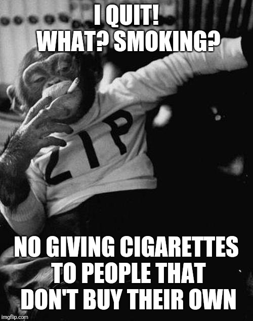 smoking monkey  | I QUIT! WHAT? SMOKING? NO GIVING CIGARETTES TO PEOPLE THAT DON'T BUY THEIR OWN | image tagged in smoking monkey | made w/ Imgflip meme maker