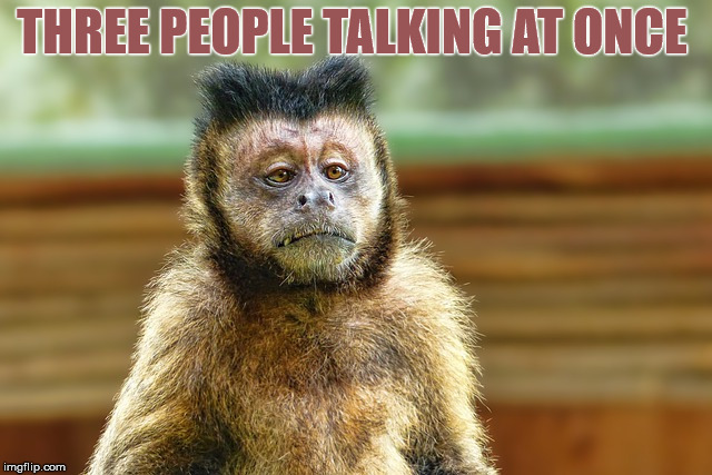 Primate ain't got time for it | THREE PEOPLE TALKING AT ONCE | image tagged in memes,monkey,ain't nobody got time for that,shut up | made w/ Imgflip meme maker