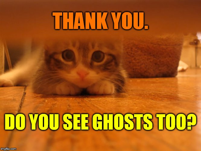 THANK YOU. DO YOU SEE GHOSTS TOO? | made w/ Imgflip meme maker