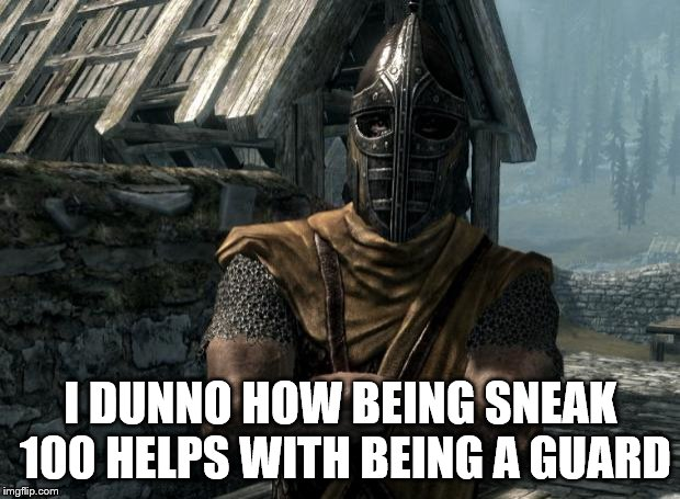 Skyrim guards be like | I DUNNO HOW BEING SNEAK 100 HELPS WITH BEING A GUARD | image tagged in skyrim guards be like | made w/ Imgflip meme maker