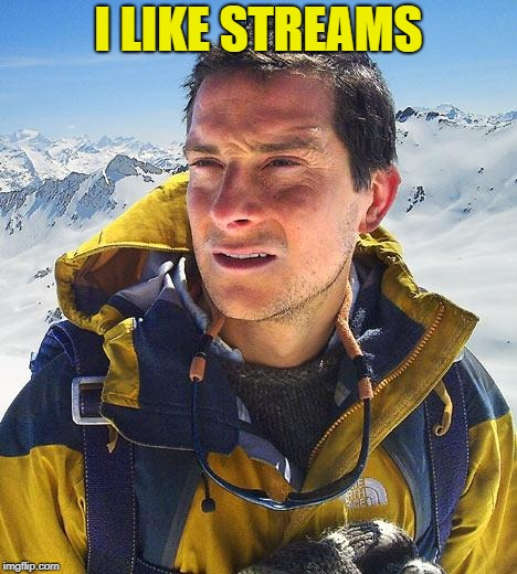 Bear Grylls Meme | I LIKE STREAMS | image tagged in memes,bear grylls | made w/ Imgflip meme maker