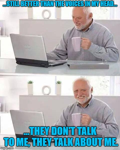 Hide the Pain Harold Meme | ...STILL BETTER THAN THE VOICES IN MY HEAD... ...THEY DON'T TALK TO ME, THEY TALK ABOUT ME. | image tagged in memes,hide the pain harold | made w/ Imgflip meme maker