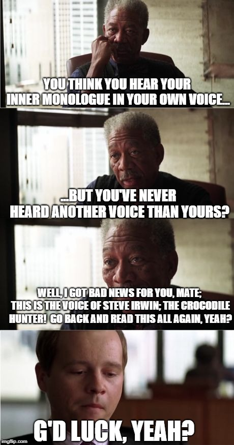 Morgan Freeman Good Luck Meme | YOU THINK YOU HEAR YOUR INNER MONOLOGUE IN YOUR OWN VOICE... ...BUT YOU'VE NEVER HEARD ANOTHER VOICE THAN YOURS? G'D LUCK, YEAH? WELL, I GOT | image tagged in memes,morgan freeman good luck | made w/ Imgflip meme maker