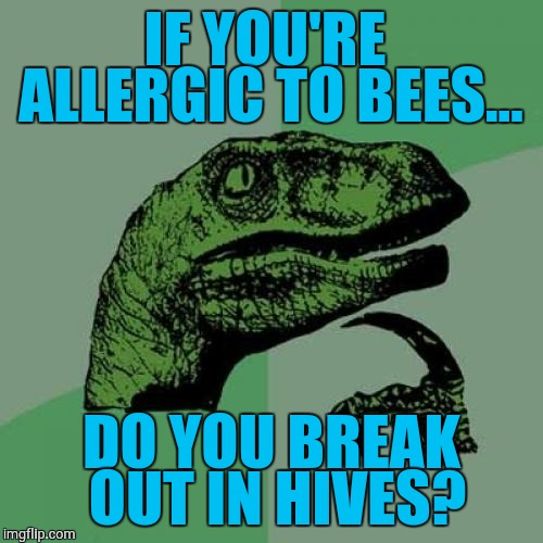 Philosoraptor Meme | IF YOU'RE ALLERGIC TO BEES... DO YOU BREAK OUT IN HIVES? | image tagged in memes,philosoraptor | made w/ Imgflip meme maker