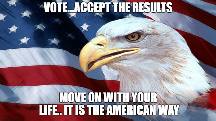 American Flag | VOTE...ACCEPT THE RESULTS MOVE ON WITH YOUR LIFE.. IT IS THE AMERICAN WAY | image tagged in american flag | made w/ Imgflip meme maker