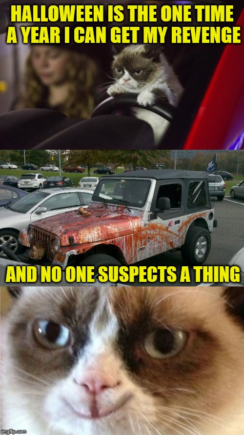 Serial Tardar | HALLOWEEN IS THE ONE TIME A YEAR I CAN GET MY REVENGE AND NO ONE SUSPECTS A THING | image tagged in memes,grumpy cat driving,halloween,bloody jeep,grumpy cat happy,revenge | made w/ Imgflip meme maker
