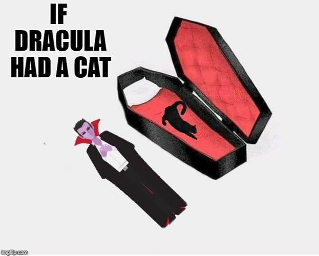 if dracula had a cat | IF DRACULA HAD A CAT | image tagged in dracula,coffin,cat | made w/ Imgflip meme maker