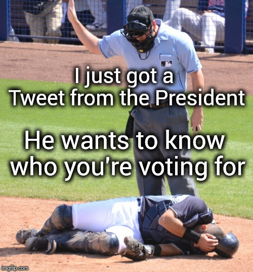 Trump is a Yankees' fan , I think | I just got a Tweet from the President He wants to know who you're voting for | image tagged in umpire and catcher,there's no crying in baseball,watching tv,donald trump,world series | made w/ Imgflip meme maker