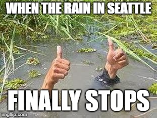 FLOODING THUMBS UP | WHEN THE RAIN IN SEATTLE FINALLY STOPS | image tagged in flooding thumbs up | made w/ Imgflip meme maker
