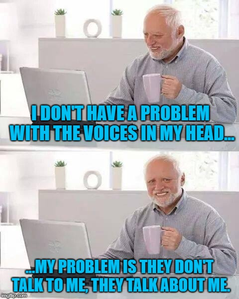 Seriously, it's like Mystery Science Theater 3000 up in my dome. |  I DON'T HAVE A PROBLEM WITH THE VOICES IN MY HEAD... ...MY PROBLEM IS THEY DON'T TALK TO ME, THEY TALK ABOUT ME. | image tagged in memes,hide the pain harold,voices | made w/ Imgflip meme maker