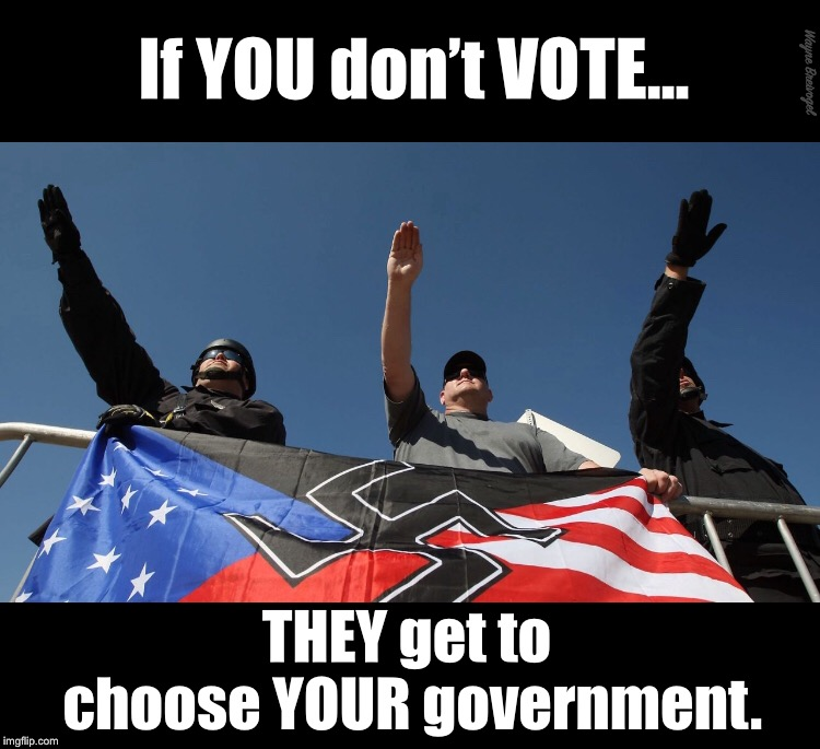 If you don't vote they get to choose your government | If YOU don't VOTE... THEY get to choose YOUR government. Wayne Breivogel | image tagged in nazis,saluting,white nationalism | made w/ Imgflip meme maker