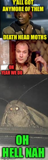 Happy Halloween week memers!  | Y'ALL GOT ANYMORE OF THEM DEATH HEAD MOTHS OH YEAH WE DO OH HELL NAH | image tagged in yall got any more of,moth,buffalo bill,halloween,you readin this,if so then hey | made w/ Imgflip meme maker