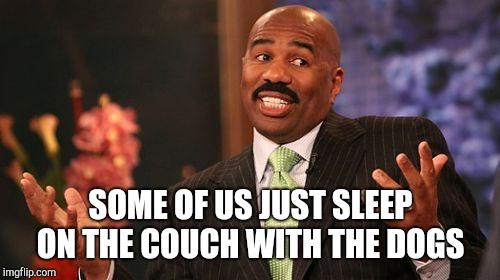 Steve Harvey Meme | SOME OF US JUST SLEEP ON THE COUCH WITH THE DOGS | image tagged in memes,steve harvey | made w/ Imgflip meme maker