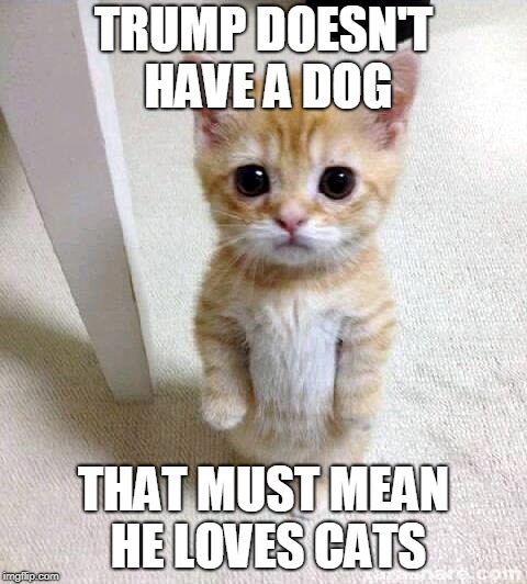Trump love Meme | TRUMP DOESN'T HAVE A DOG THAT MUST MEAN HE LOVES CATS | image tagged in memes,cute cat,donald trump,president trump | made w/ Imgflip meme maker