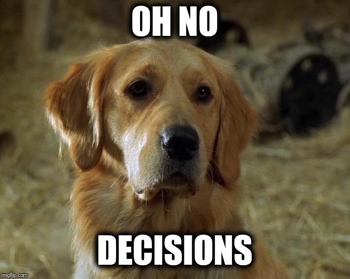Oh no... Decisions... 10th Kingdom |  OH NO; DECISIONS | image tagged in prince wendell dog 10th kingdom,indecisive,decisions decisions,tenth kingdom,10th kingdom,oh no | made w/ Imgflip meme maker