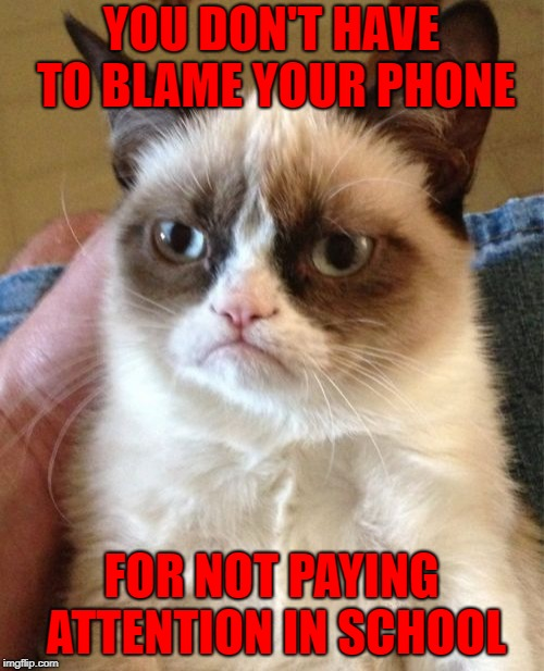 Grumpy Cat Meme | YOU DON'T HAVE TO BLAME YOUR PHONE FOR NOT PAYING ATTENTION IN SCHOOL | image tagged in memes,grumpy cat | made w/ Imgflip meme maker