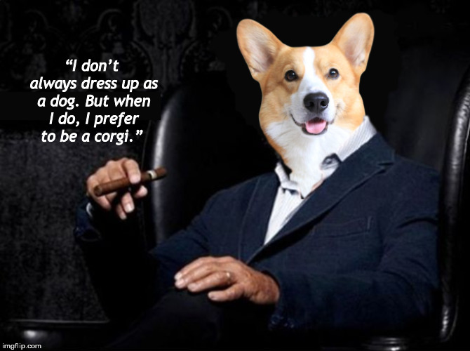 The Most Interesting Man in the World Must Really Like Dogs. A Lot... | image tagged in the most interesting man in the world,corgi,pembroke welsh corgi,funny,memes,dogs | made w/ Imgflip meme maker