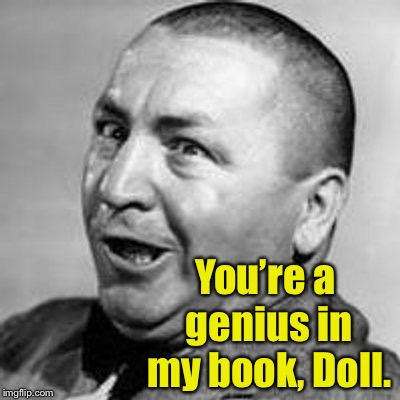 Curly | You're a genius in my book, Doll. | image tagged in curly | made w/ Imgflip meme maker
