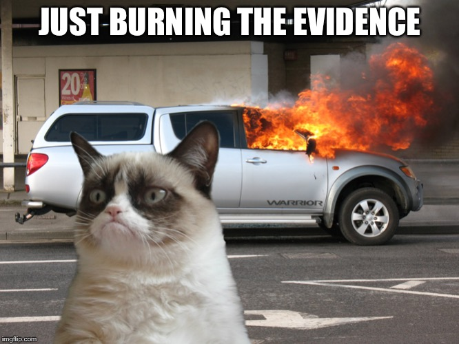 Grumpy Cat Car on Fire | JUST BURNING THE EVIDENCE | image tagged in grumpy cat car on fire | made w/ Imgflip meme maker