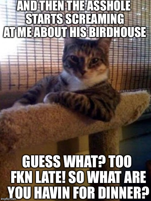 The Most Interesting Cat In The World | AND THEN THE ASSHOLE STARTS SCREAMING AT ME ABOUT HIS BIRDHOUSE GUESS WHAT? TOO FKN LATE! SO WHAT ARE YOU HAVIN FOR DINNER? | image tagged in memes,the most interesting cat in the world | made w/ Imgflip meme maker