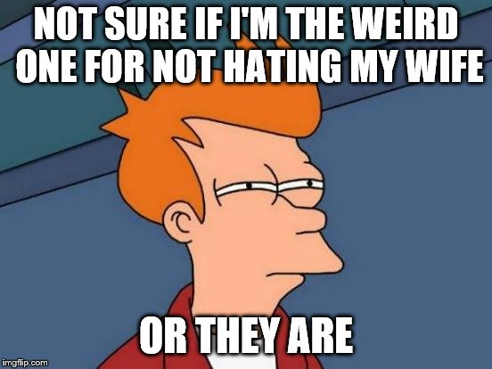 Futurama Fry Meme | NOT SURE IF I'M THE WEIRD ONE FOR NOT HATING MY WIFE OR THEY ARE | image tagged in memes,futurama fry | made w/ Imgflip meme maker