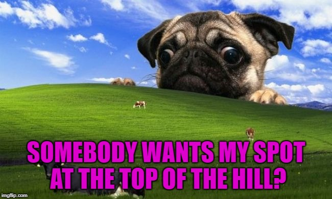 SOMEBODY WANTS MY SPOT AT THE TOP OF THE HILL? | made w/ Imgflip meme maker