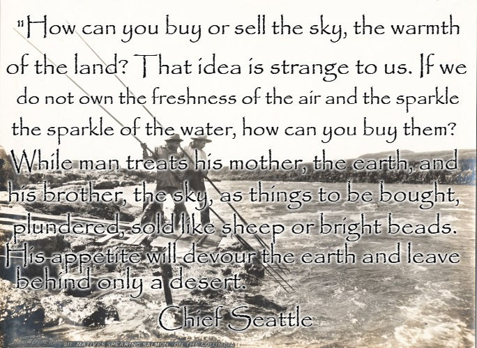 "Chief Seatle |  ""How can you buy or sell the sky, the warmth; of the land? That idea is strange to us. If we; do not own the freshness of the air and the sparkle; the sparkle of the water, how can you buy them? While man treats his mother, the earth, and; his brother, the sky, as things to be bought, plundered, sold like sheep or bright beads. His appetite will devour the earth and leave; behind only a desert. Chief Seattle 