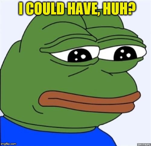 sad frog | I COULD HAVE, HUH? | image tagged in sad frog | made w/ Imgflip meme maker